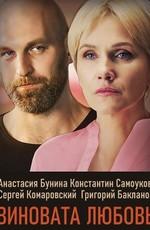 Знаки любви. Виновата любовь (2021)