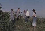 Сцена из фильма Секрет Бахуса / Secretul lui Bachus (1983) Секрет Бахуса сцена 10