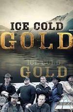 Discovery: Ледяное золото