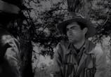 Фильм Дело Макомбера / The Macomber Affair (1947) - cцена 2