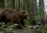 Сцена из фильма Гризли / Into the Grizzly Maze (2014) Гризли сцена 12