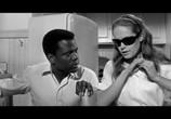 Фильм Клочок синевы / A Patch of Blue (1965) - cцена 5