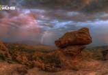 Сцена из фильма Национальные парки Америки. Сагуаро / America's National Parks. Saguaro (2015) Национальные парки Америки. Сагуаро сцена 11