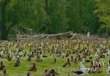 Сцена из фильма Тропические островки Земли / Earth's Tropical Islands (2020) Тропические островки Земли сцена 18
