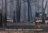 ТВ Австралия в огне / Australia Burning (2020) - cцена 1