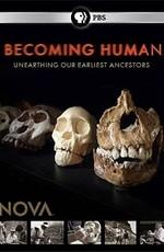 PBS. NOVA: Становление человека