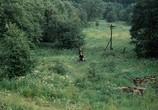 Фильм Сталкер (1979) - cцена 2