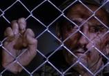 Сцена из фильма Красный рассвет / Red Dawn (1984) Красный рассвет сцена 3