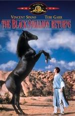 Возвращение черного скакуна