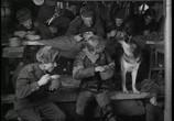 Сцена из фильма Четыре танкиста и собака / Czterej pancerni i pies (1966) Четыре танкиста и собака сцена 1
