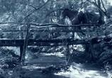 Сцена из фильма Альбион: Заколдованный жеребец / Albion: The Enchanted Stallion (2016) Альбион: Заколдованный жеребец сцена 3