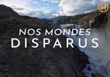 Сцена из фильма Исчезнувшие миры / Nos Mondes Disparus (2020) Исчезнувшие миры сцена 1