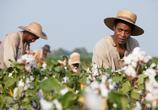 Фильм 12 лет рабства / 12 Years a Slave (2013) - cцена 9