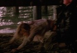 Сцена из фильма Улицы / Streets (1990) Улицы сцена 2