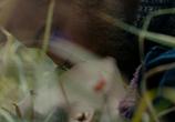 Сцена из фильма Кино про Алексеева (2014)