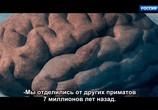 Сцена из фильма Тайны мозга / Deus Cérebro (2021) Тайны мозга сцена 1