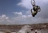 Сцена из фильма Экстремалы / Extreme Ops (2003) Экстремалы сцена 1