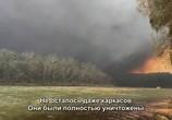 ТВ Австралия в огне / Australia Burning (2020) - cцена 2