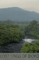 Затерянный мир острова Биоко и его короли