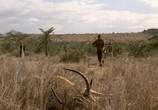 Сцена из фильма Нигде в Африке / Nirgendwo in Afrika (2003)