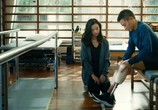 Фильм Ударная волна 2 / Chai dan zhuan jia 2 (2020) - cцена 6