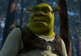 ТВ Мир фантастики: Трилогия Шрек: Киноляпы и интересные факты / Shrek 1-3 (2010) - cцена 3