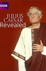 Юлий Цезарь без прикрас