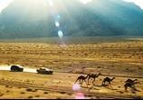 Фильм Трансформеры: Месть падших / Transformers: Revenge of the Fallen (2009) - cцена 1