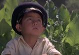 Фильм Белый пароход (1975) - cцена 3