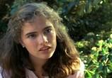 Фильм Кошмар на улице Вязов / A Nightmare on Elm Street (1984) - cцена 3