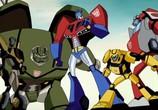 Сцена из фильма Трансформеры: Анимейтэд / Transformers: Animated (2007) Трансформеры: Анимейтэд сцена 1