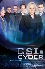 Место преступления: Киберпространство / CSI: Cyber (2015)