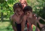 Фильм Берегись, большой брат! / Big Brother Trouble (2000) - cцена 2