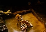 Фильм Королева Варваров / Barbarian Queen (1985) - cцена 1
