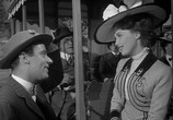 Фильм Мой брат разговаривает с лошадьми / My Brother Talks To Horses (1947) - cцена 3