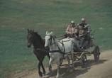 Фильм Секрет Бахуса / Secretul lui Bachus (1983) - cцена 1