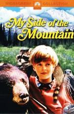 Моя сторона горы