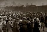 ТВ ВВС: Освенцим. Фабрика Смерти / BBC: Auschwitz (2005) - cцена 2