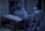 Сцена из фильма Близнецы из Айдахо / Twin Falls Idaho (1999) Близнецы из Айдахо сцена 10