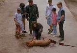Сцена из фильма Ядовитый плющ / Poison Ivy (1992) Ядовитый плющ сцена 1