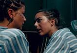 Сцена из фильма В изоляции / De utvalda (2020) В изоляции сцена 2