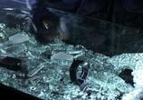 Сцена из фильма По волчьим законам / Animal Kingdom (2016)